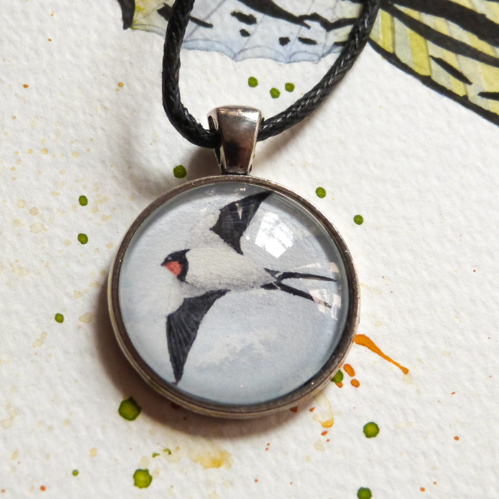 swallow-jaskółka